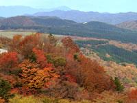 茶臼山高原周遊コース