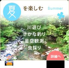 夏を楽しむ